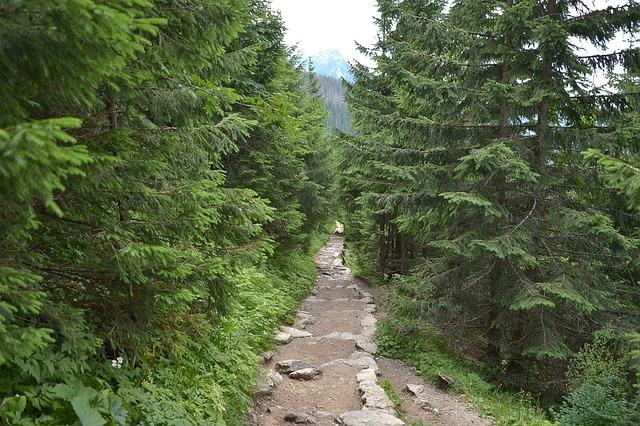 Planowanie rodzinnych wakacji w górach to nie lada wyzwanie